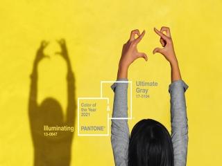 رنگ سال 2021 اعلام شد ؛ رنگ خاکستری و زرد