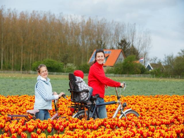 12 مورد دانستنی راجع به هلند، یکی از زیباترین کشورهای جهان