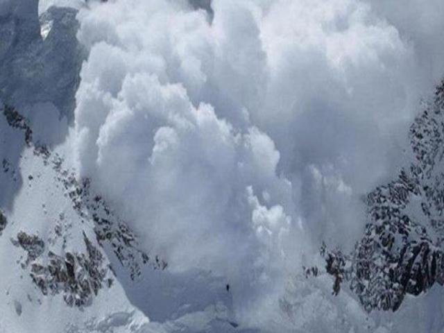 آخرین آمار تلفات در ارتفاعات تهران/ ۸ فوتی و چندین مفقودی در ۲۴ ساعت گذشته