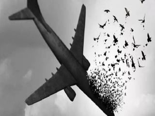 روحانی: مسببین حادثه هواپیمای اوکراینی باید محاکمه شوند
