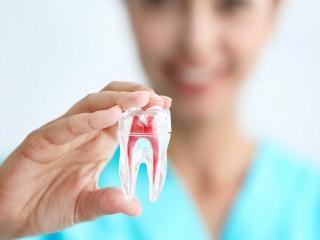 دکتر خوب برای درمان ریشه دندان