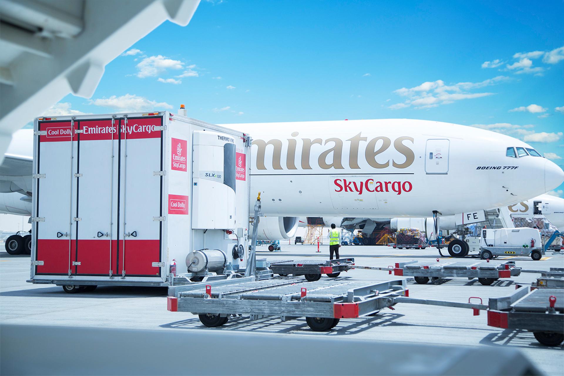 هواپیمایی اسکای کارگو
