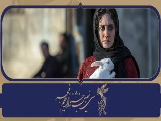 در هشتمین روز از جشنواره 39 فیلم فجر چه گذشت؟