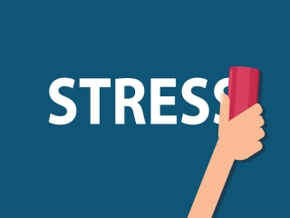 برای کاهش استرس چه خوراکی هایی بخوریم؟
