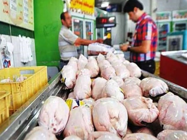 وزیر جهاد کشاورزی از مردم به خاطر بازار مرغ عذرخواهی کرد