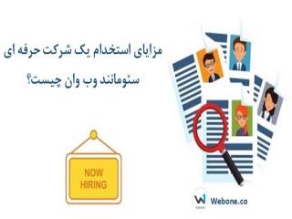 مزایای استخدام یک شرکت حرفه ای سئو مانند وب وان چیست؟