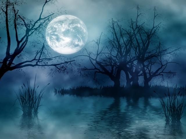 عکس های شب مهتابی