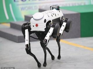 معرفی ربات های پرنده جالب