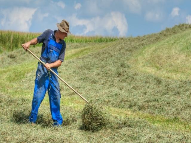 داستان کشاورز فقیر