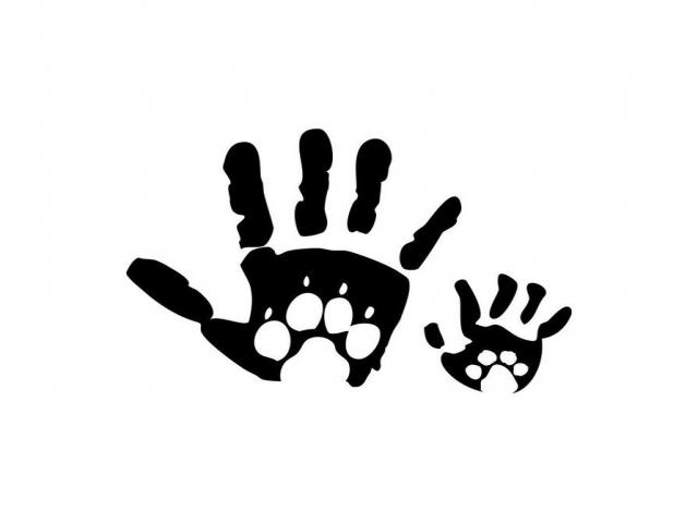 روش دریافت کارت فعال محیط زیست و حامی حیوانات