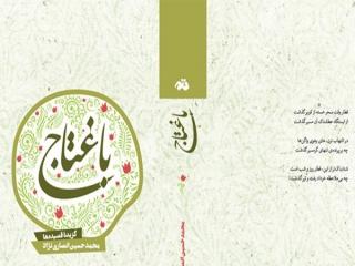 4 جلد گزیده اشعار محمدحسین انصارینژاد در «باغتاج» منتشر شد