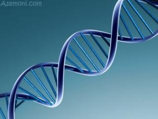 ژن درمانی به دادِ پارکینسون می رسد؟