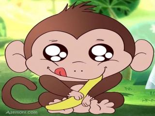 قصه خانواده میمون ها