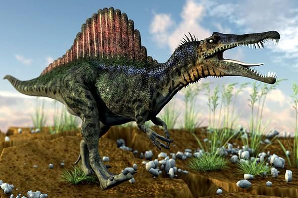 دایناسور و نام های آن