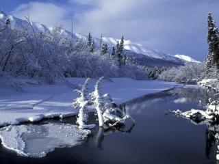 عکس زیبایی برف