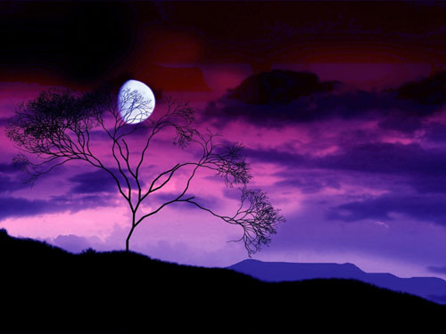Night-Sky-With-Moon-Behind