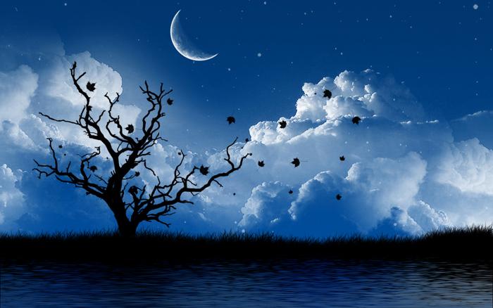 beautiful-night-wallpaper-hd-133