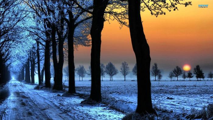 91962__ღ-awesome-sunset-in-winter-ღ_p