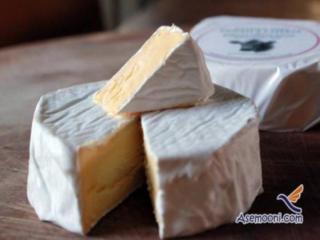 طرز تهیه پنیر کورت