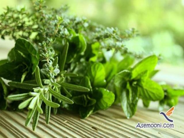 معرفی گیاهان موثر برای درمان اضطراب