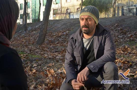 majid-salehi(3)