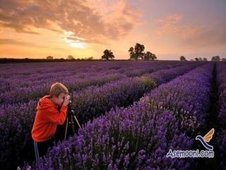 آموزش استفاده از نوردهی دستی در عکاسی