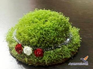 طرز تهیه سبزه عید با خاکشیر