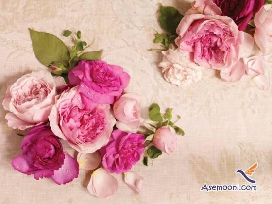 rose-water(1)