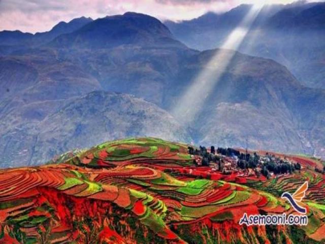 مزرعه رویایی دونگ چوآن در چین