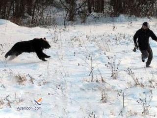 جدال خونین کوهنورد خرم آبادی با خرس قهوه ای