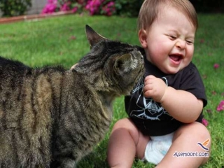 عکس هایی زیبا از بچه ها و گربه هایشان