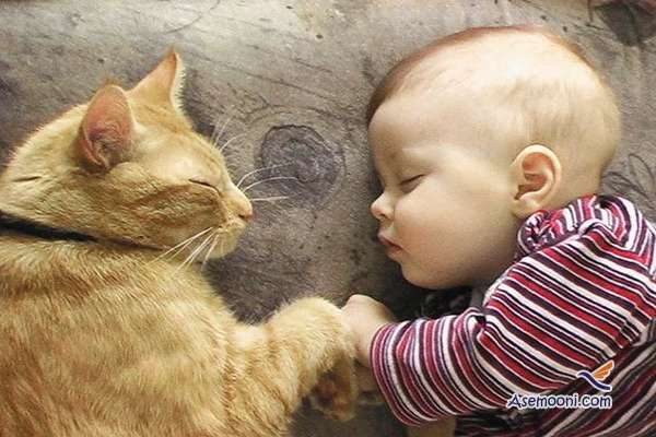 the-kids-and-their-cat(13)