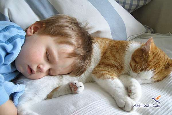 the-kids-and-their-cat(14)