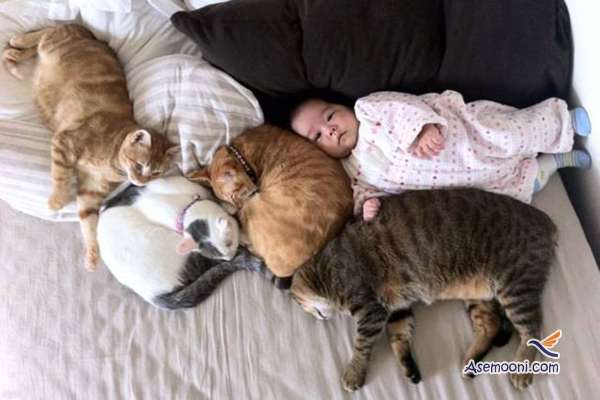 the-kids-and-their-cat(15)