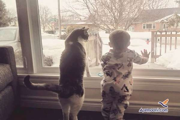 the-kids-and-their-cat(9)