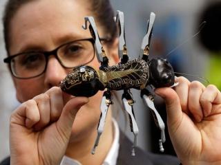 مورچه های ربات شرکت فستو