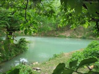 چشمه و دریاچه گل رامیان