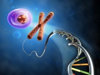 تاریخچه کشف ساختار DNA