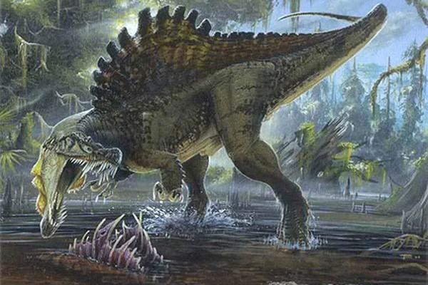 giant-animal-on-earth(6)
