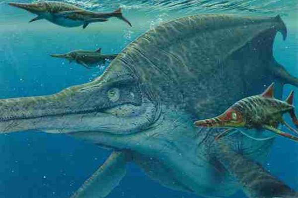 giant-animal-on-earth(8)