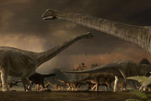 giant-animal-on-earth(9)
