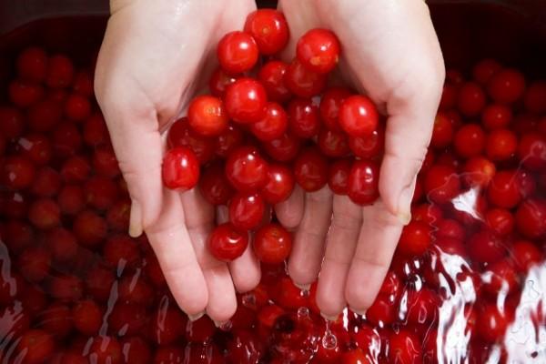 sour-cherry-properties(3)