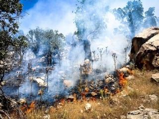 آتش، سکانس آخر ادعای ورود سیلاب به هامون !