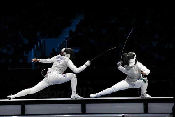 Fencing(3)