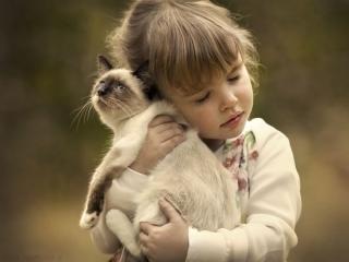 شعر کودکانه، گربه من ناز نازیه