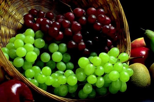 benefits-grapes(4)