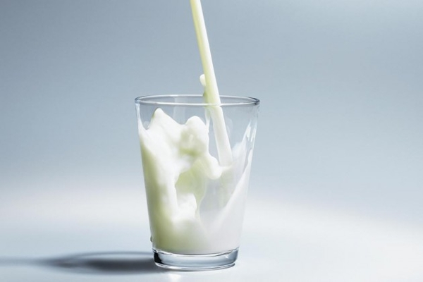 eat-hot-or-cold-milk
