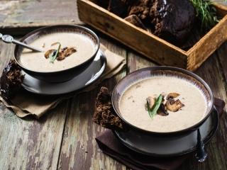 طرز تهیه سوپ قارچ خامه ای خوشمزه
