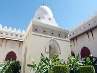 مسجد شجره کجاست؟