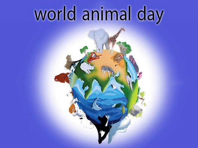 4 اکتبر ، روز جهانی حیوانات